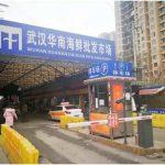 武漢肺炎始發地華南海鮮市場的照片,觸目驚心!
